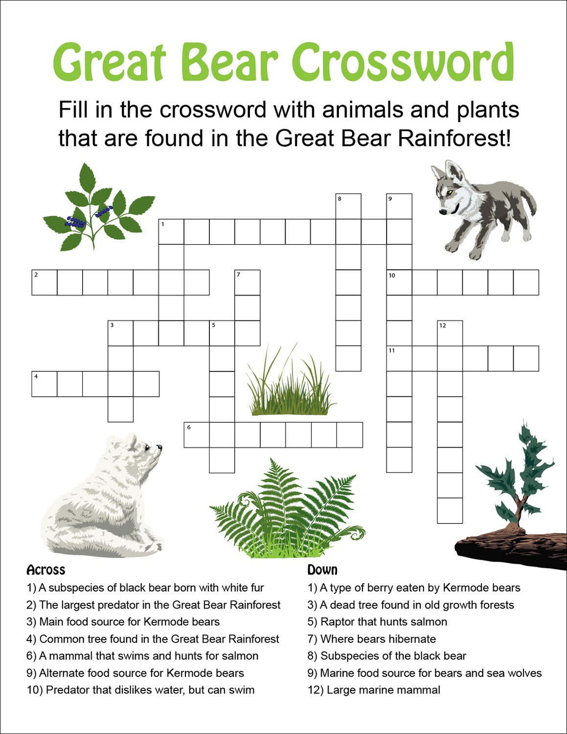 cross word puzzles for kids bear