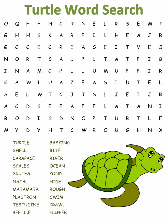 easy word search puzzles turtle