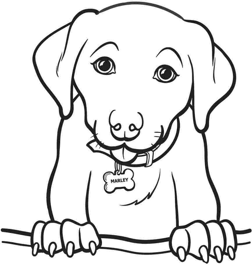 Colouring Pictures to Print Dog