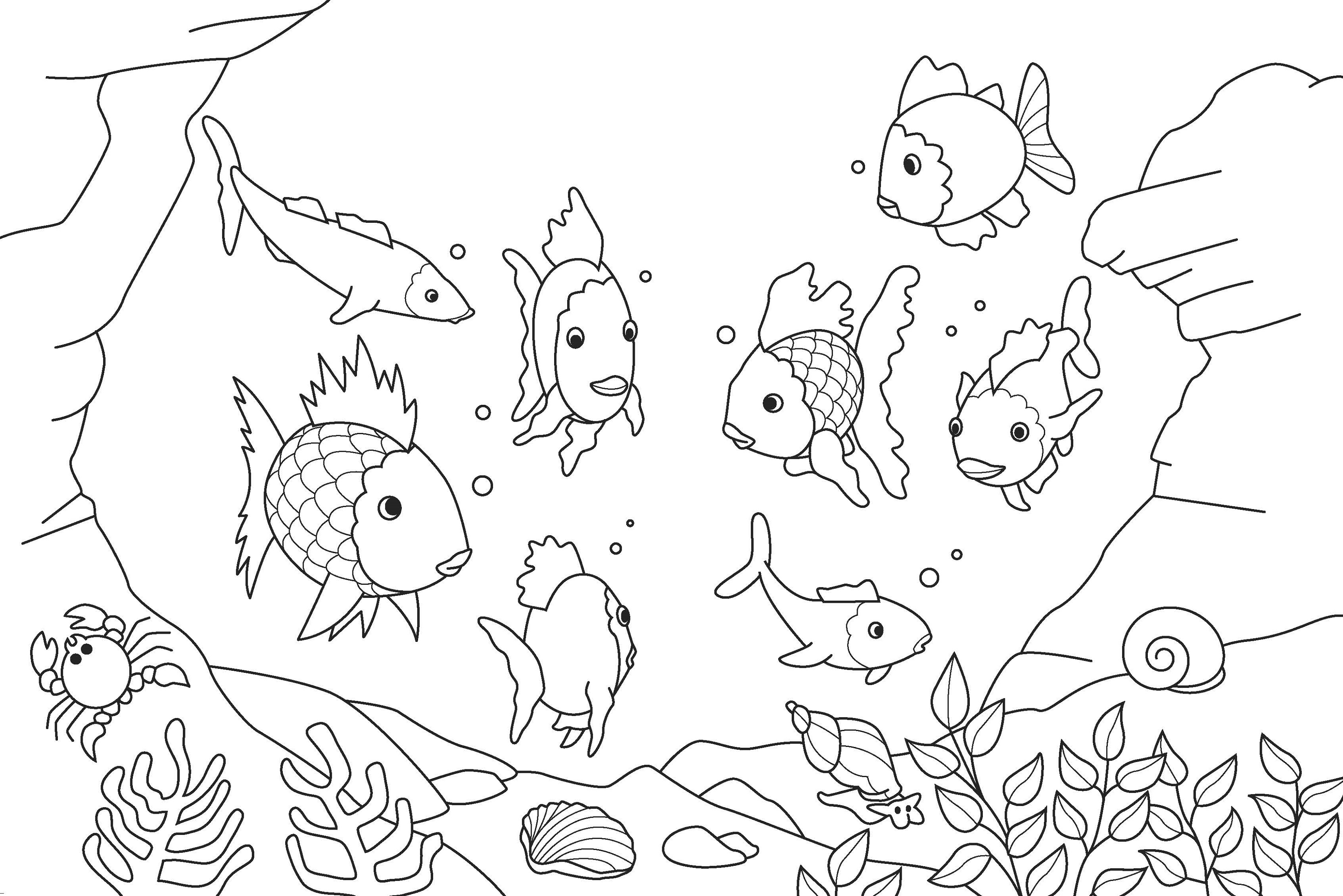 Fish Coloring Pages for Kids