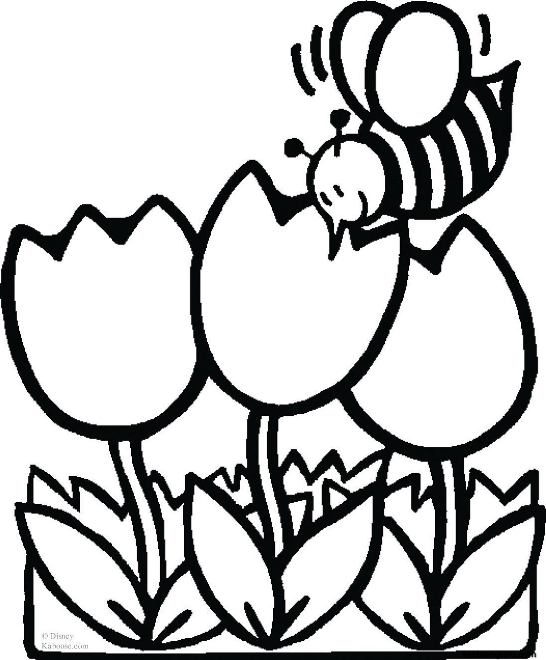 Print Out Coloring Sheets Tulips