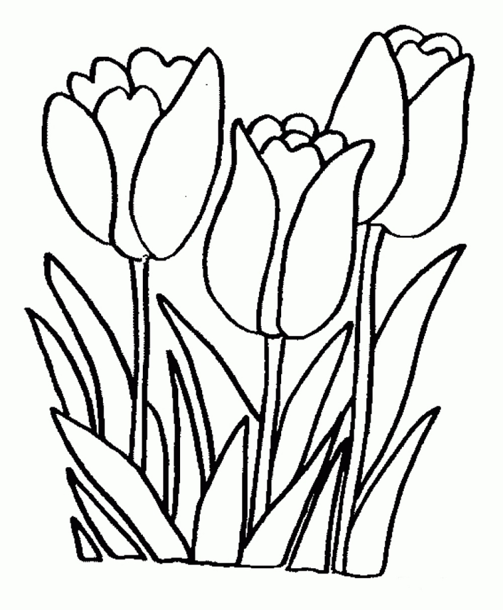 Printable Coloring Pages for Girls Flowers