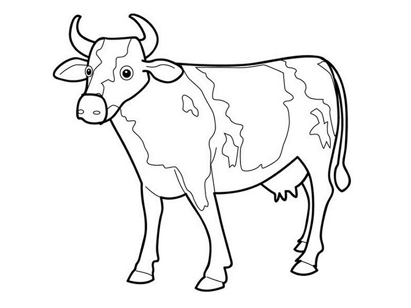 Printable Coloring Pages for Toddlers Cow