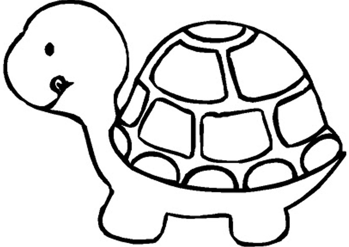 Animal Coloring Pages Turtle