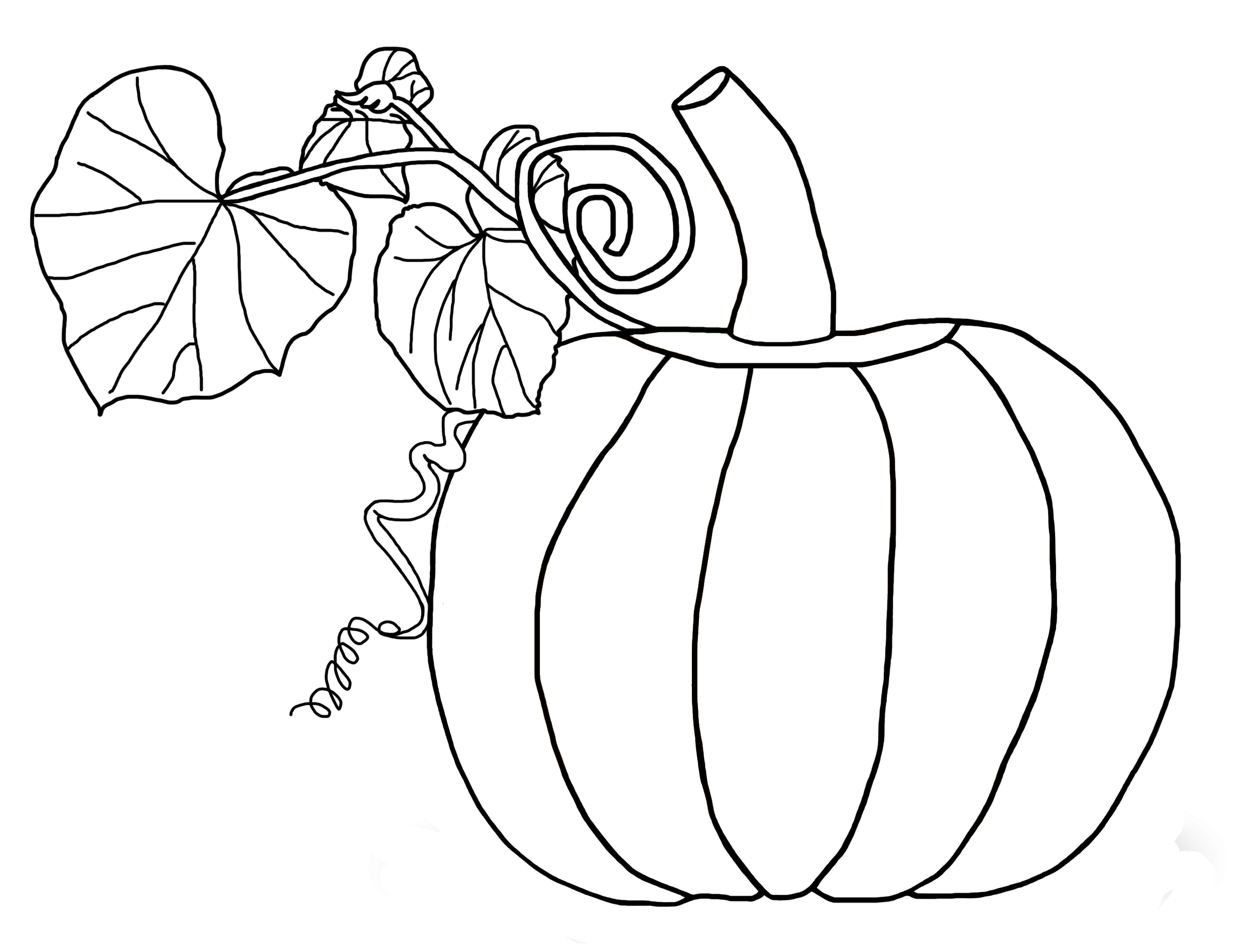 Coloring Book for Kids Pumpkins