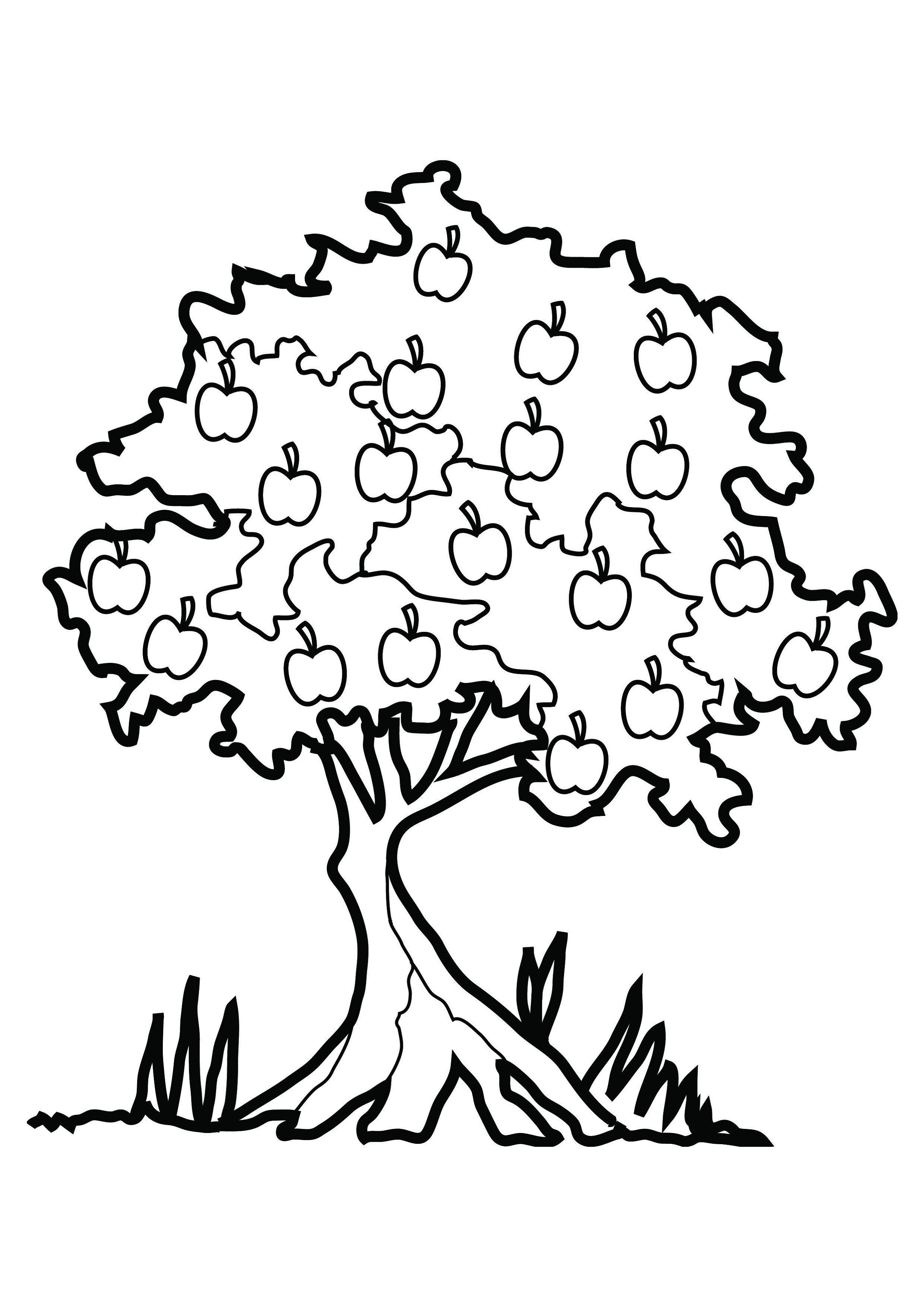 Coloring Pages For Kids Tree