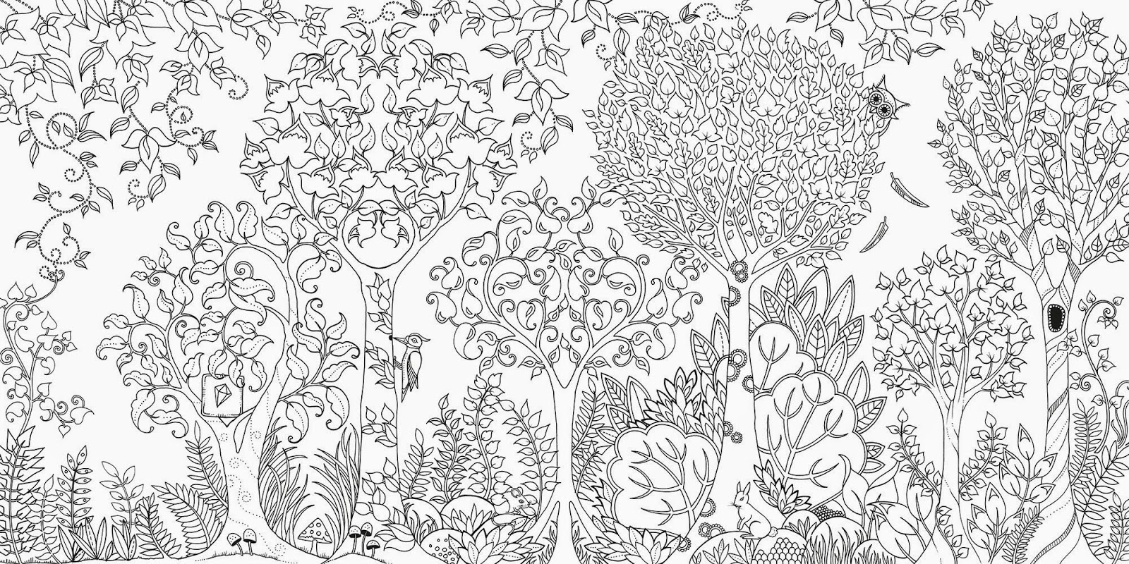 Adult Coloring Books Garden