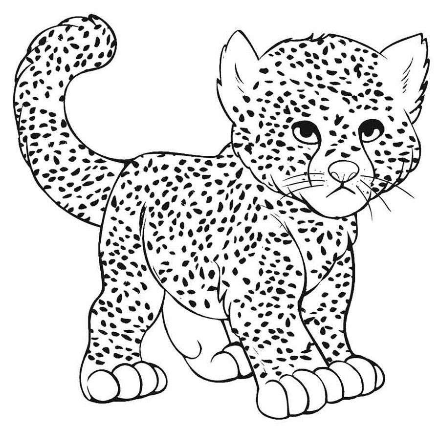 Cheetah Coloring Pages Baby