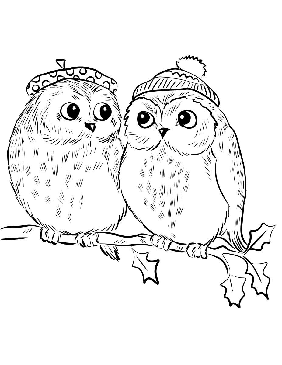 Couple Of Cute Owl Coloring Pages