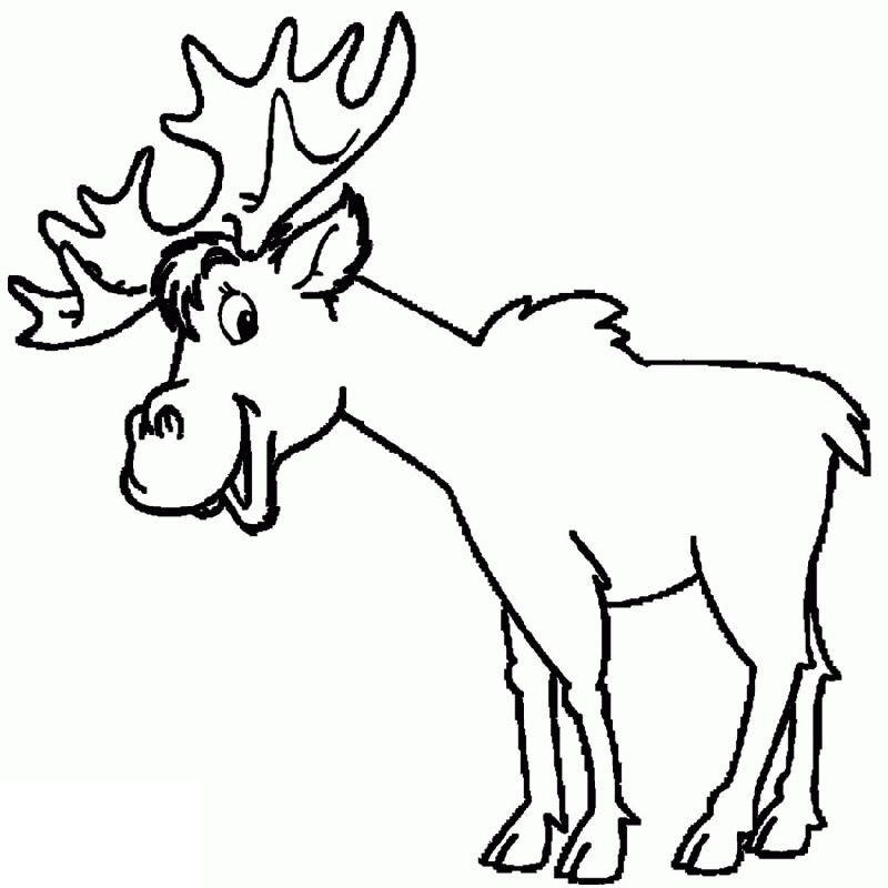 Elk Coloring Pages For Kids
