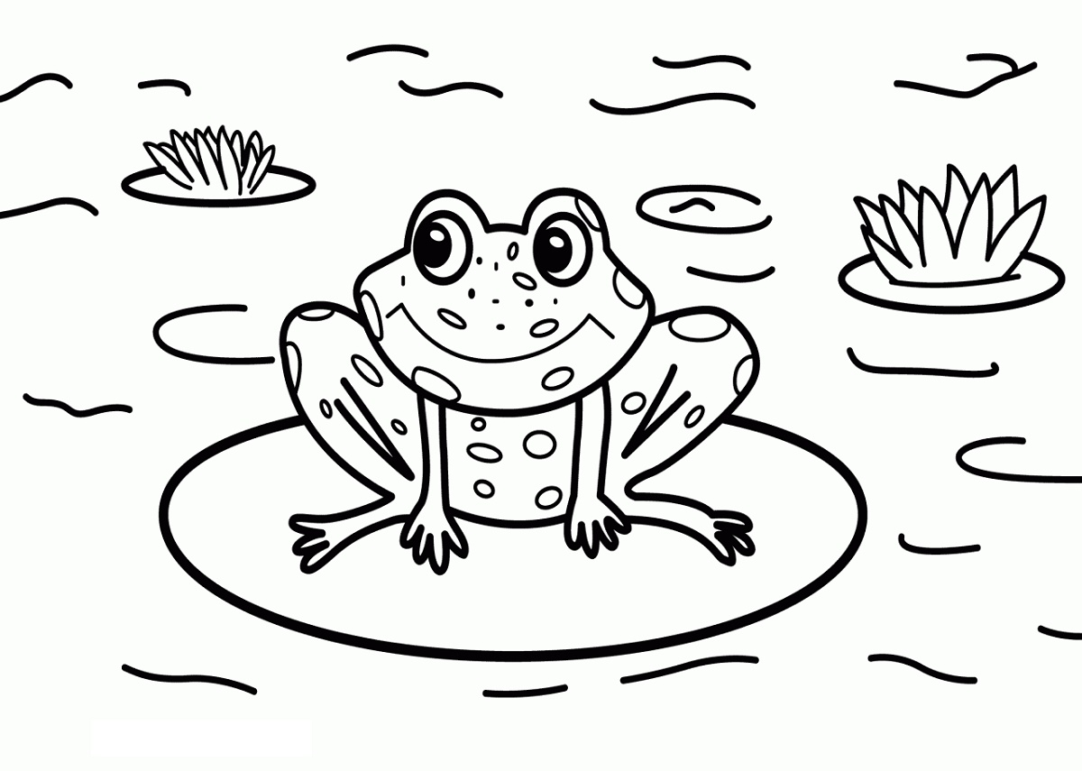 Frog Coloring Pages By A Pond