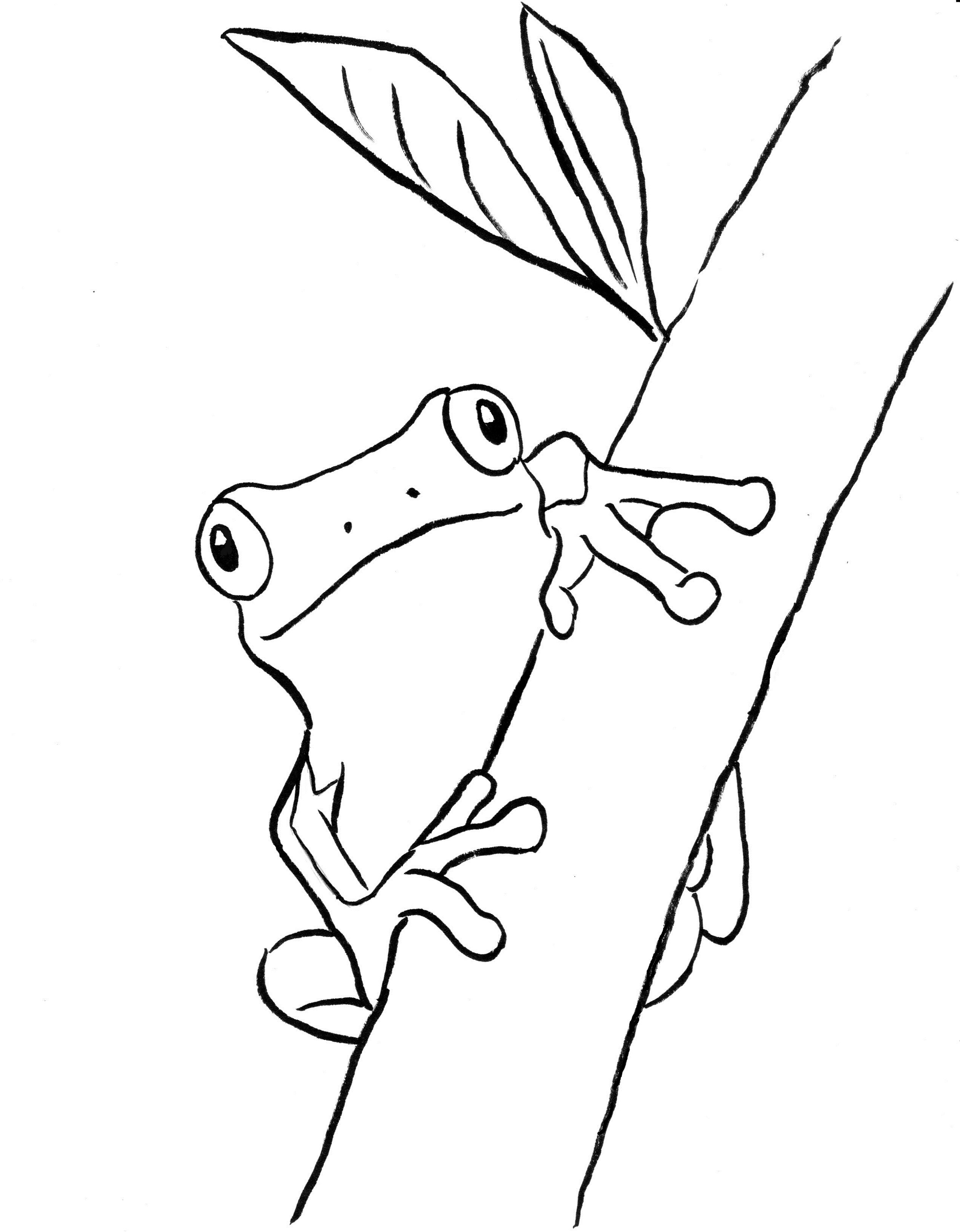 Frog Coloring Pages Tree