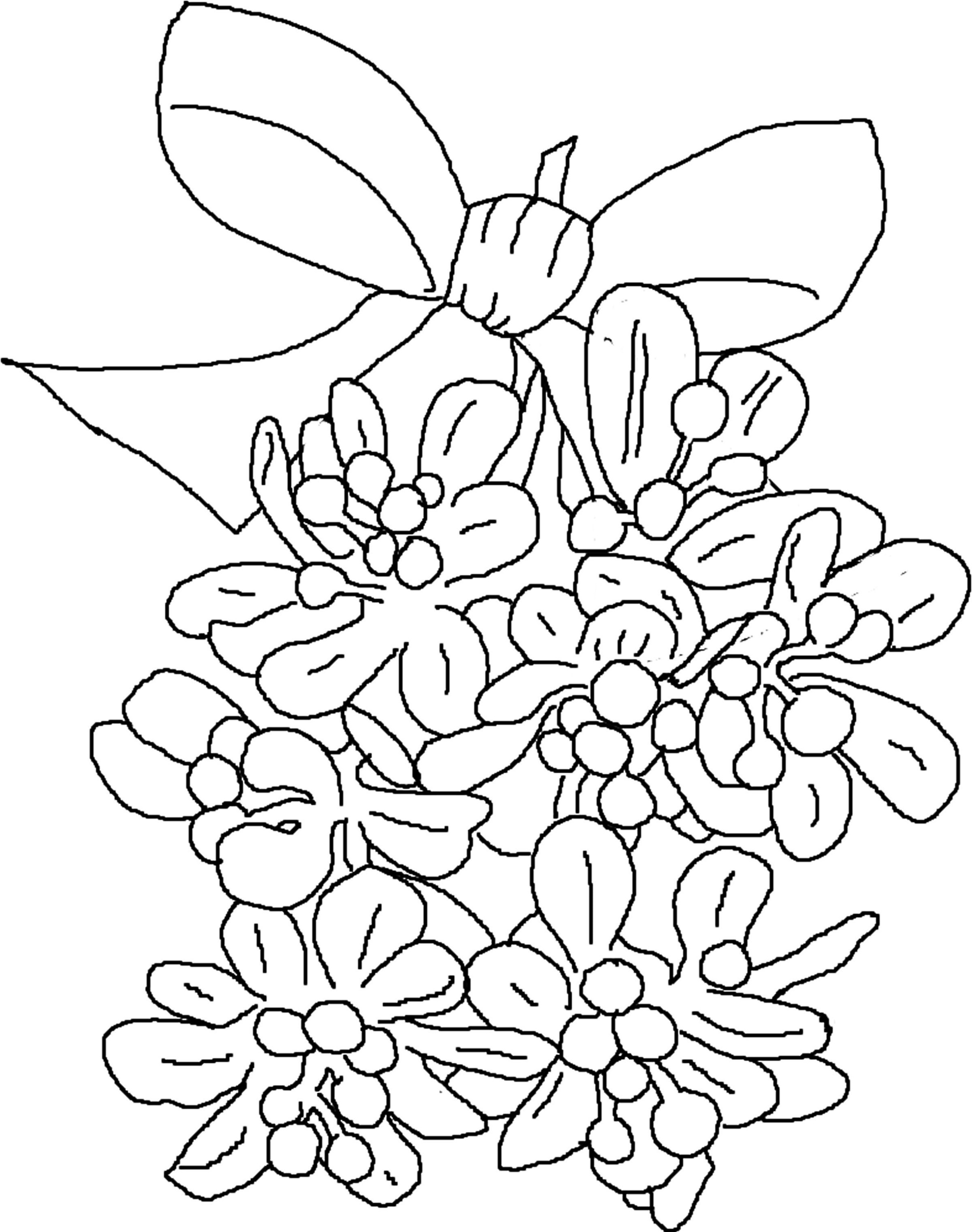 Mistletoe Coloring Pages Christmas