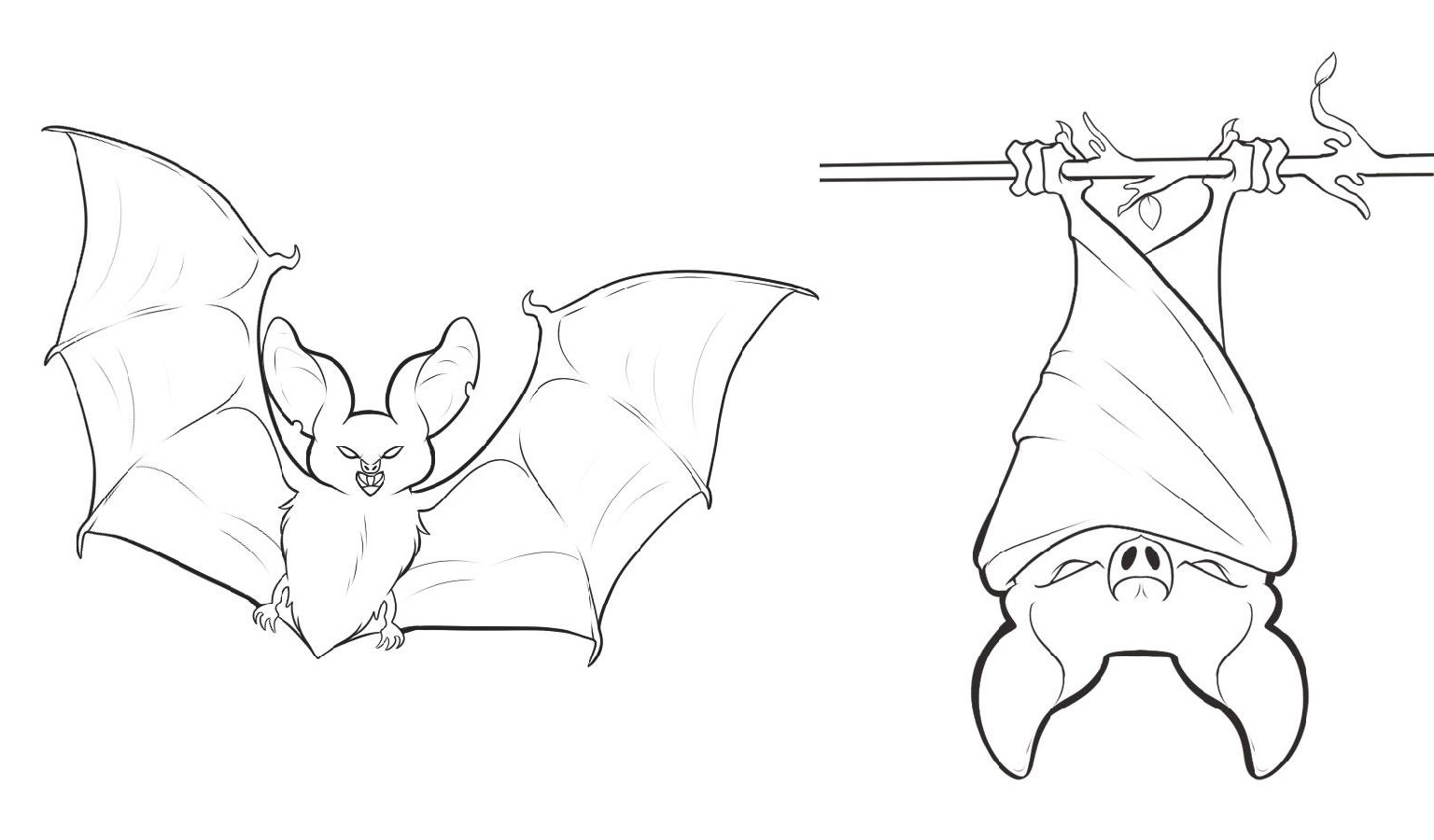 Bat Coloring Pages Printable