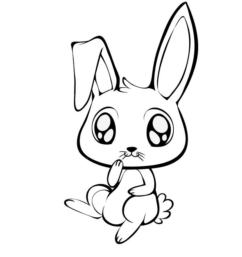 Bunny Coloring Pages Cartoon