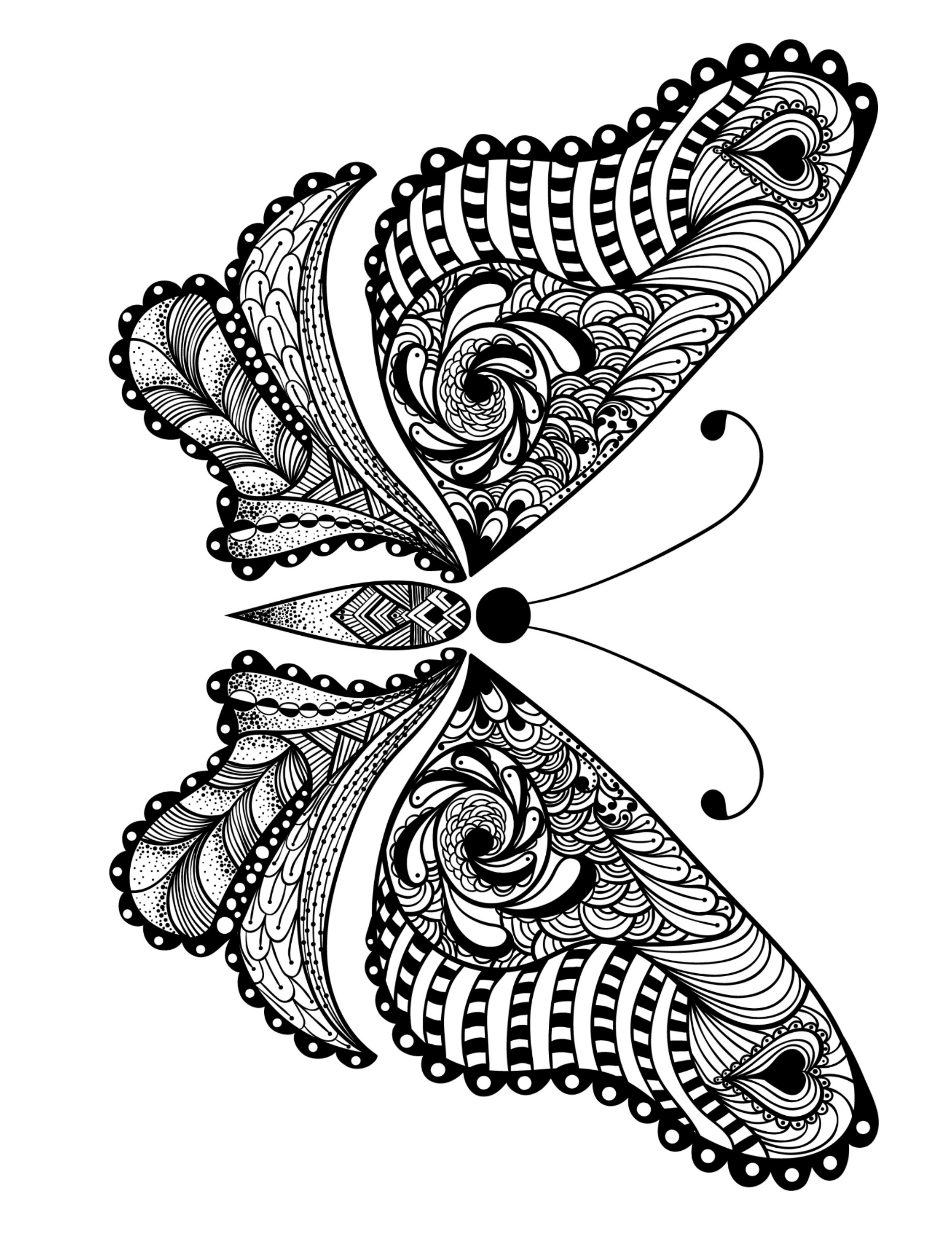 Coloring Book For Adult Free Butterfly