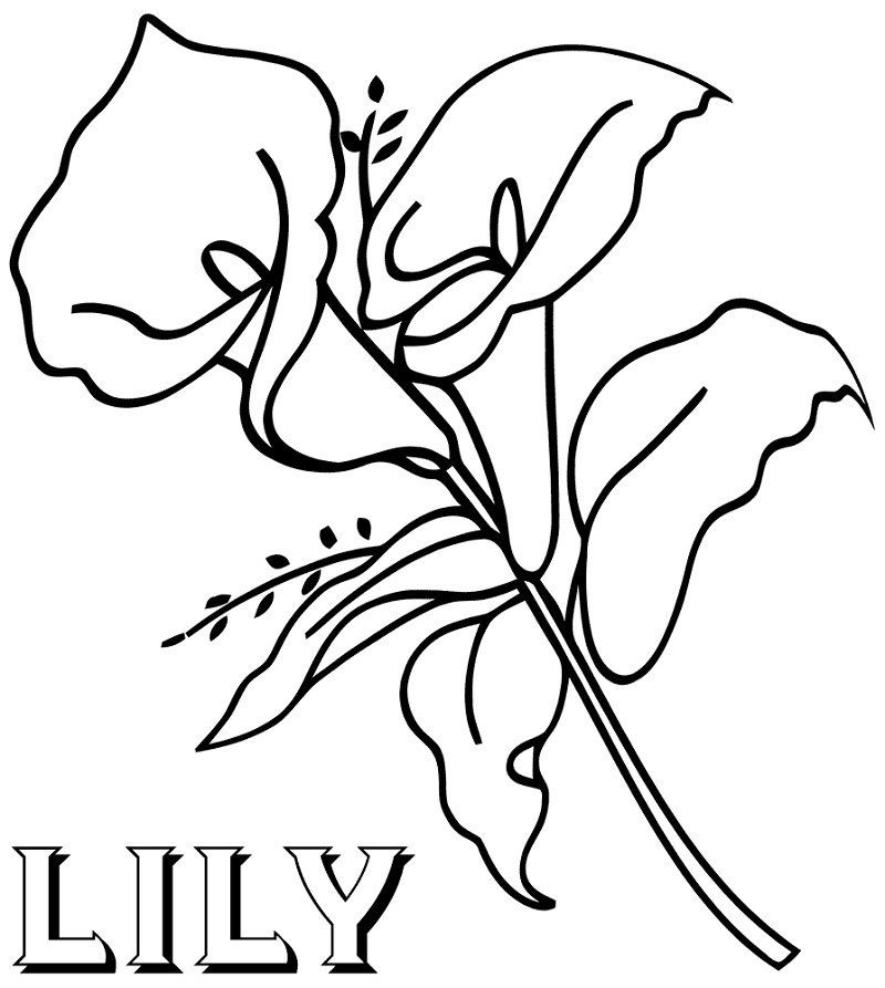 Coloring-Pictures-Of-Flowers-Lily