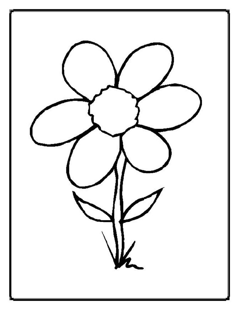 Flower Coloring Sheets Free