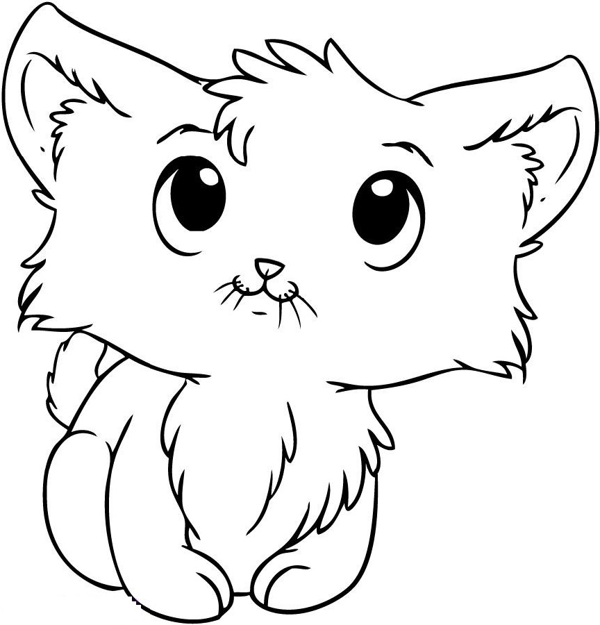 Kitten Coloring Pages Cute
