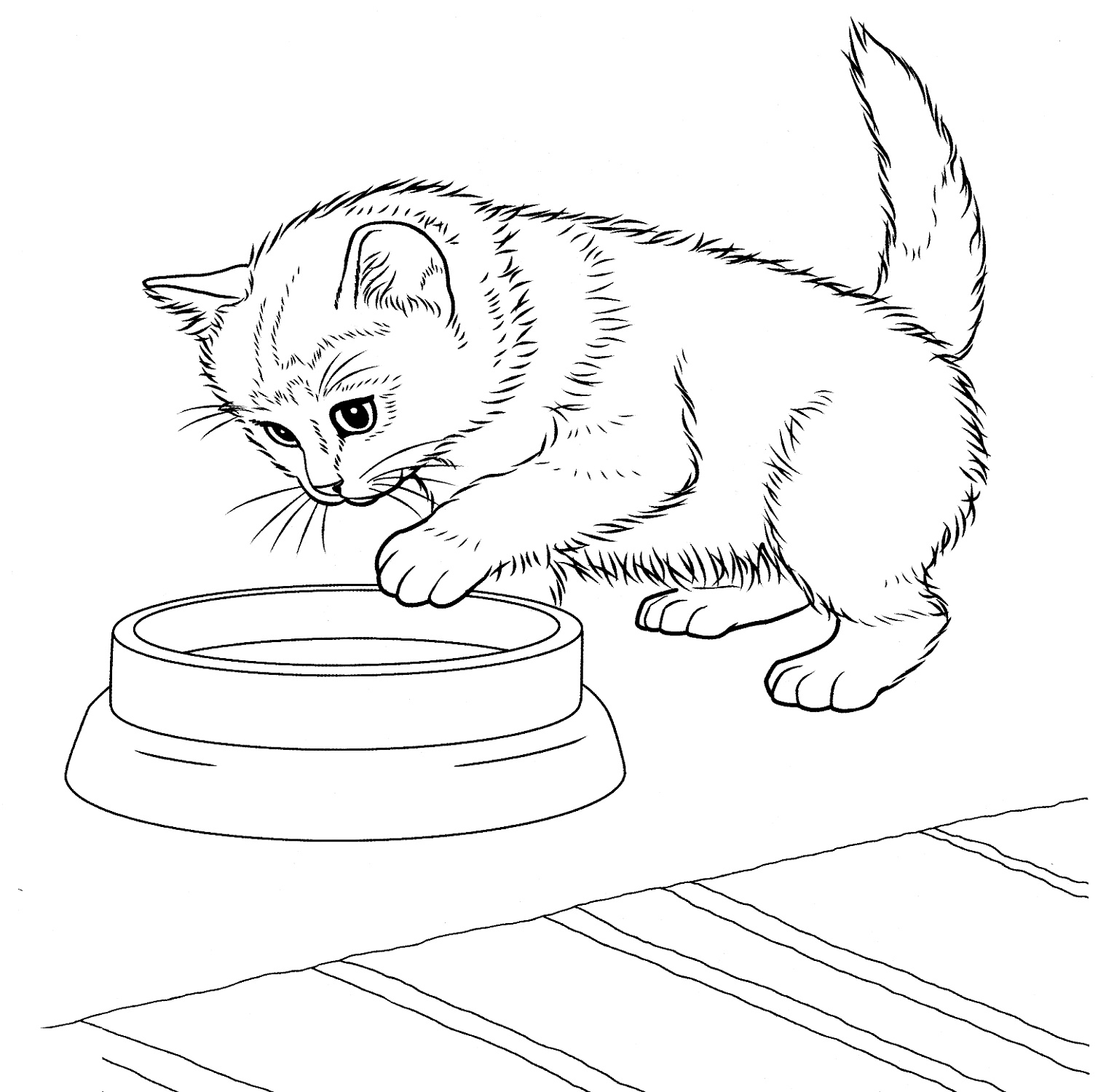 Kitten Coloring Pages Javanese