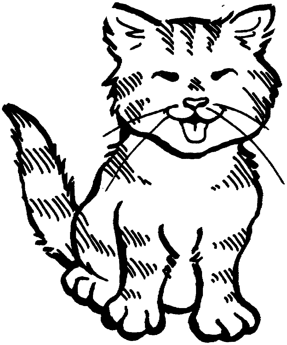 Kitten Coloring Pages Meowing