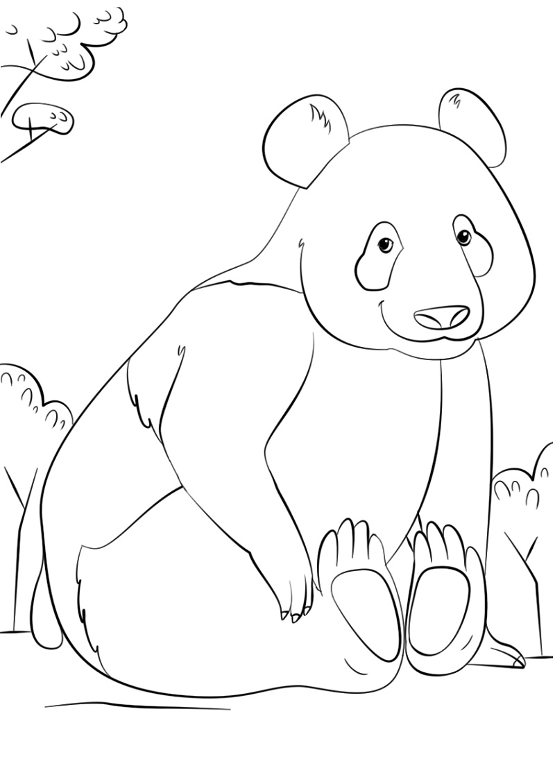 Panda Coloring Pages Cute