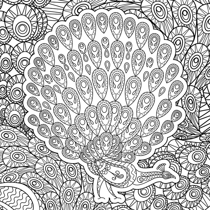 Peacock Coloring Pages Abstract