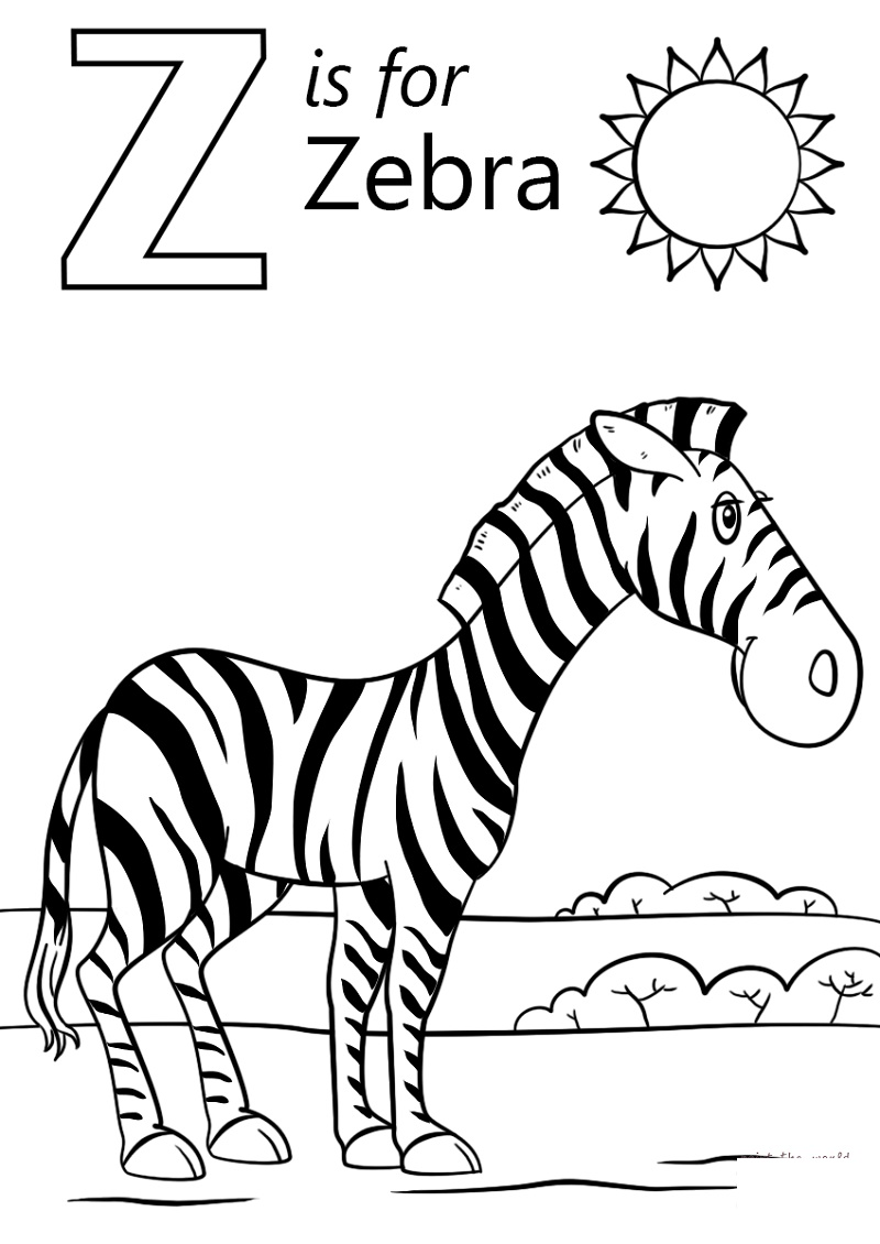 Zebra Coloring Pages Letter Z