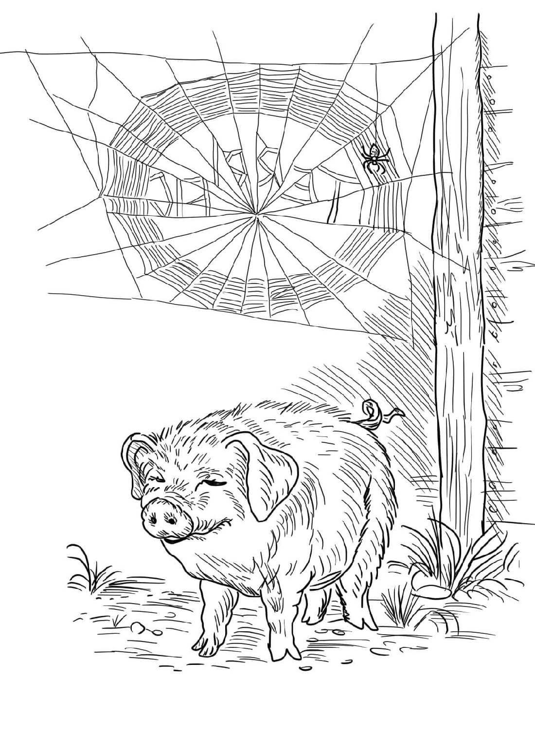 Charlotte's Web Coloring Pages Wilbur