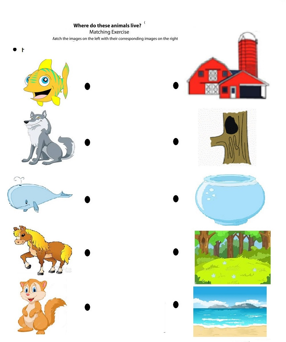 Children's Fun Activity Sheets Matching