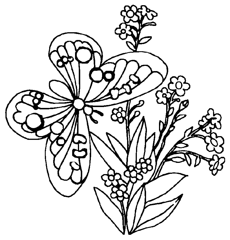 Coloring Pages Of Flowers And Butterflies Printable
