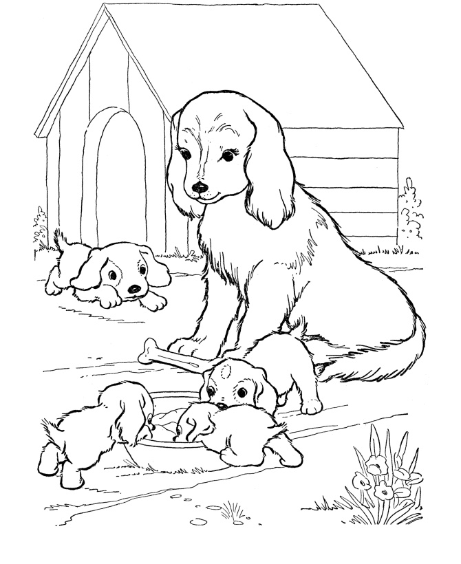 Dog Coloring Pages Baby