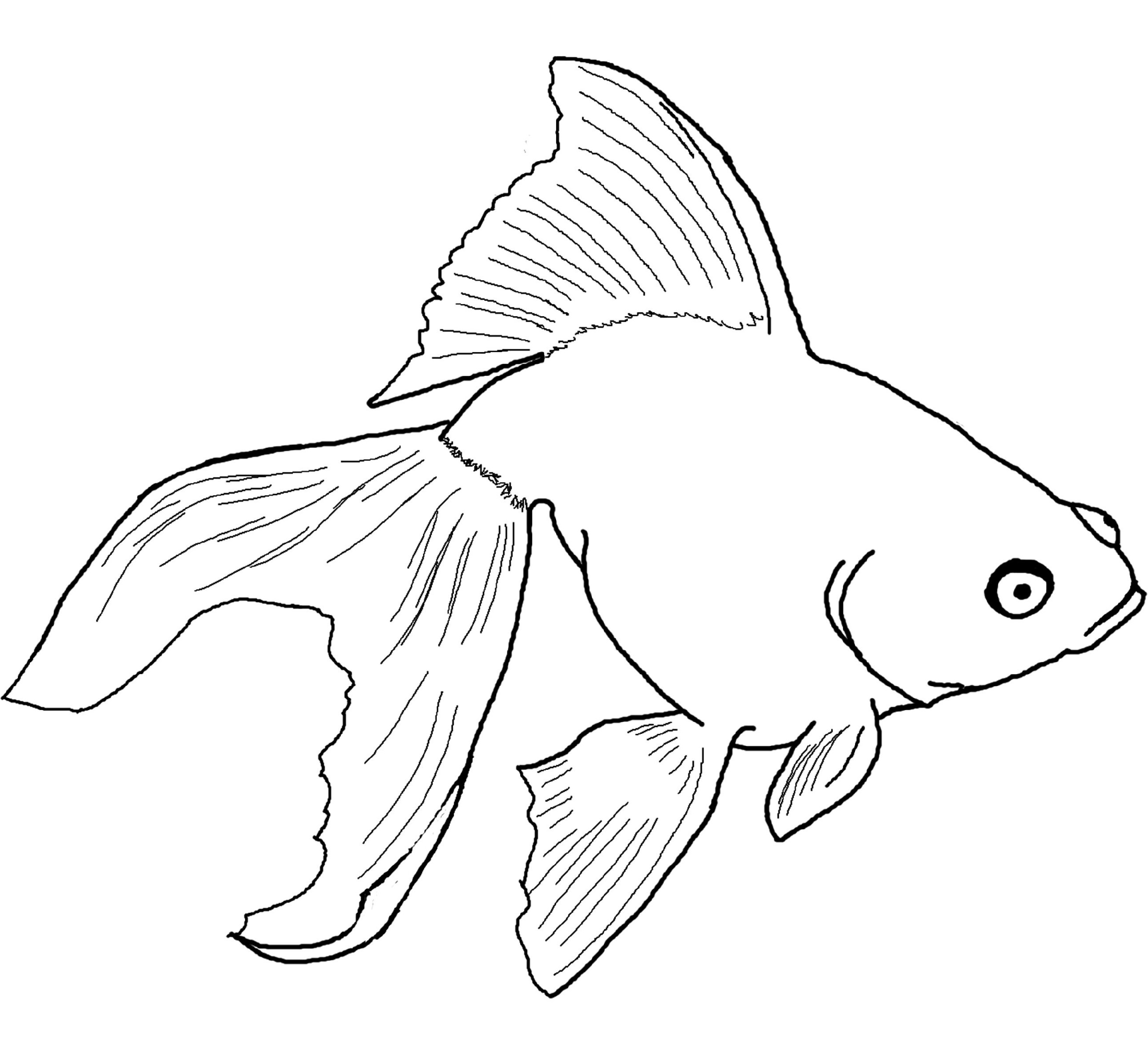 Drawing Sheets for Kids Fish