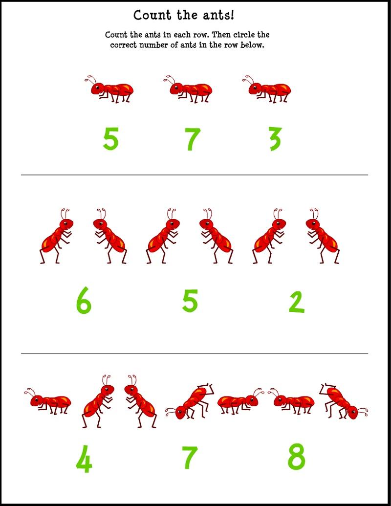 Free School Worksheets Preschool Math