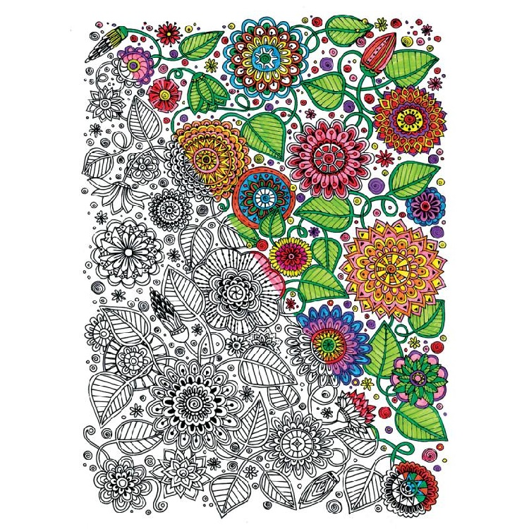Adult Coloring Books Walmart Floral