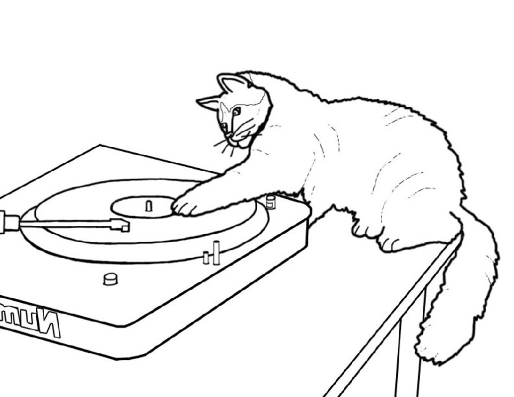 Coloring Book Vinyl Cat