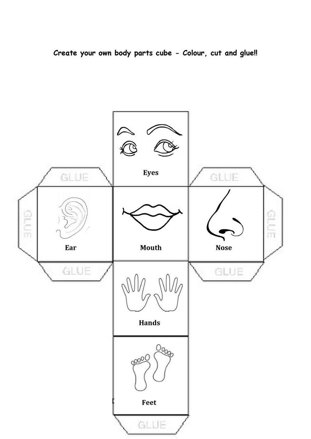 Fun Activity Worksheets Body Parts