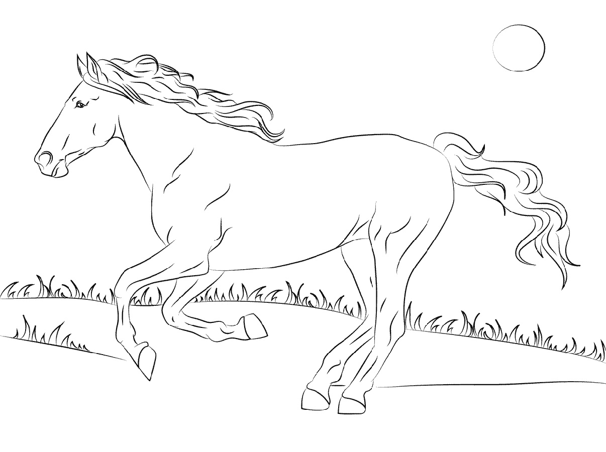 Horse Coloring Book Mustang