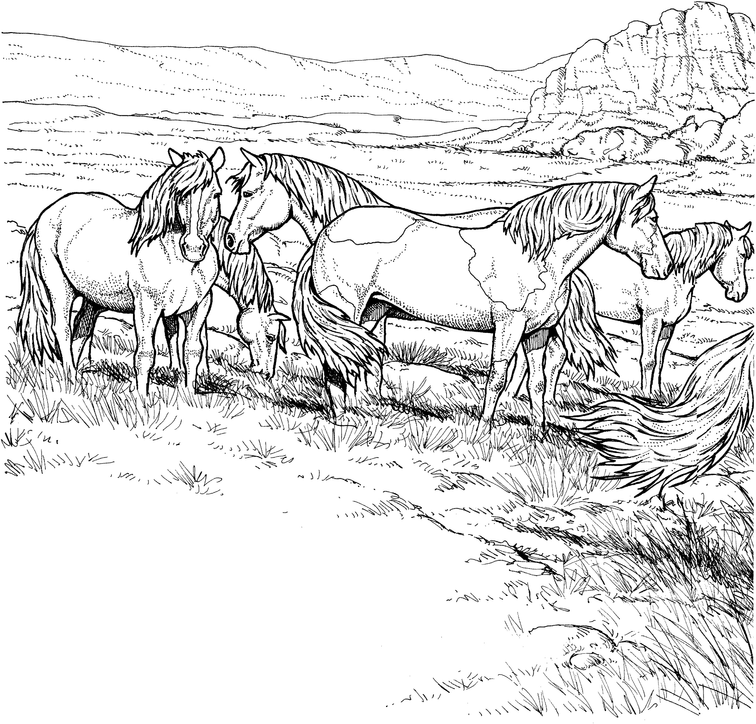 Horse Coloring Book Realistic