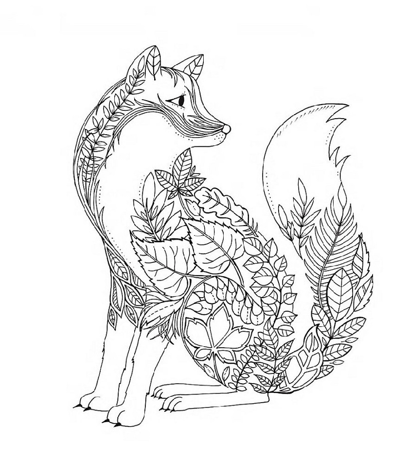 Johanna-Basford-Coloring-Books-Fox