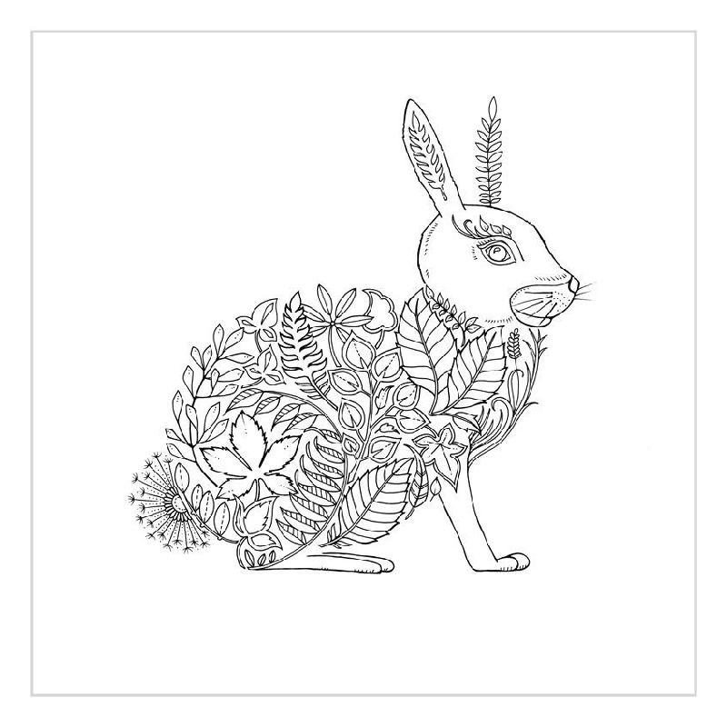 Johanna Basford Coloring Books Rabbit