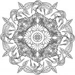 Mandala Coloring Book Nature