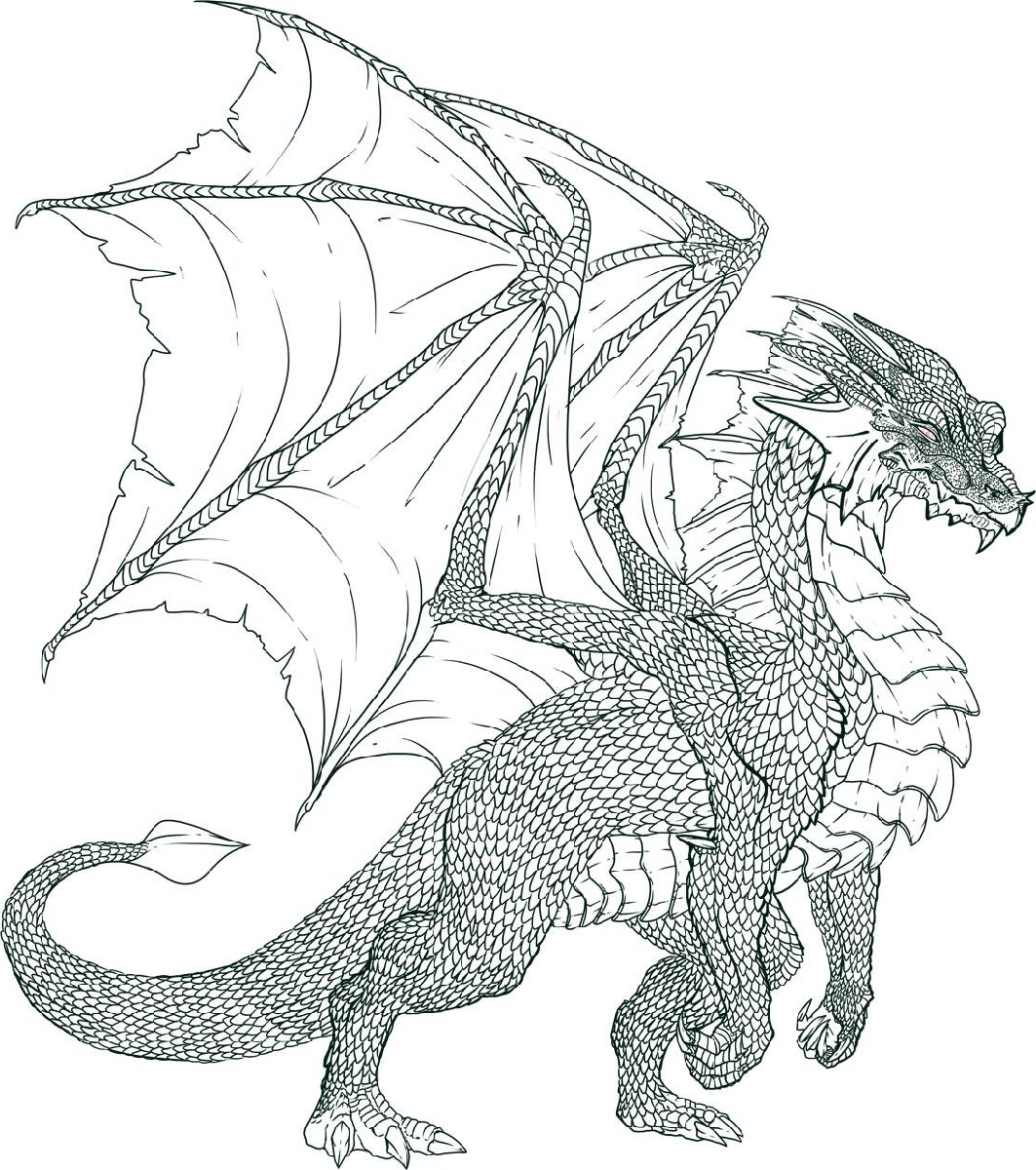 Realistic Dragon Coloring Pages Free