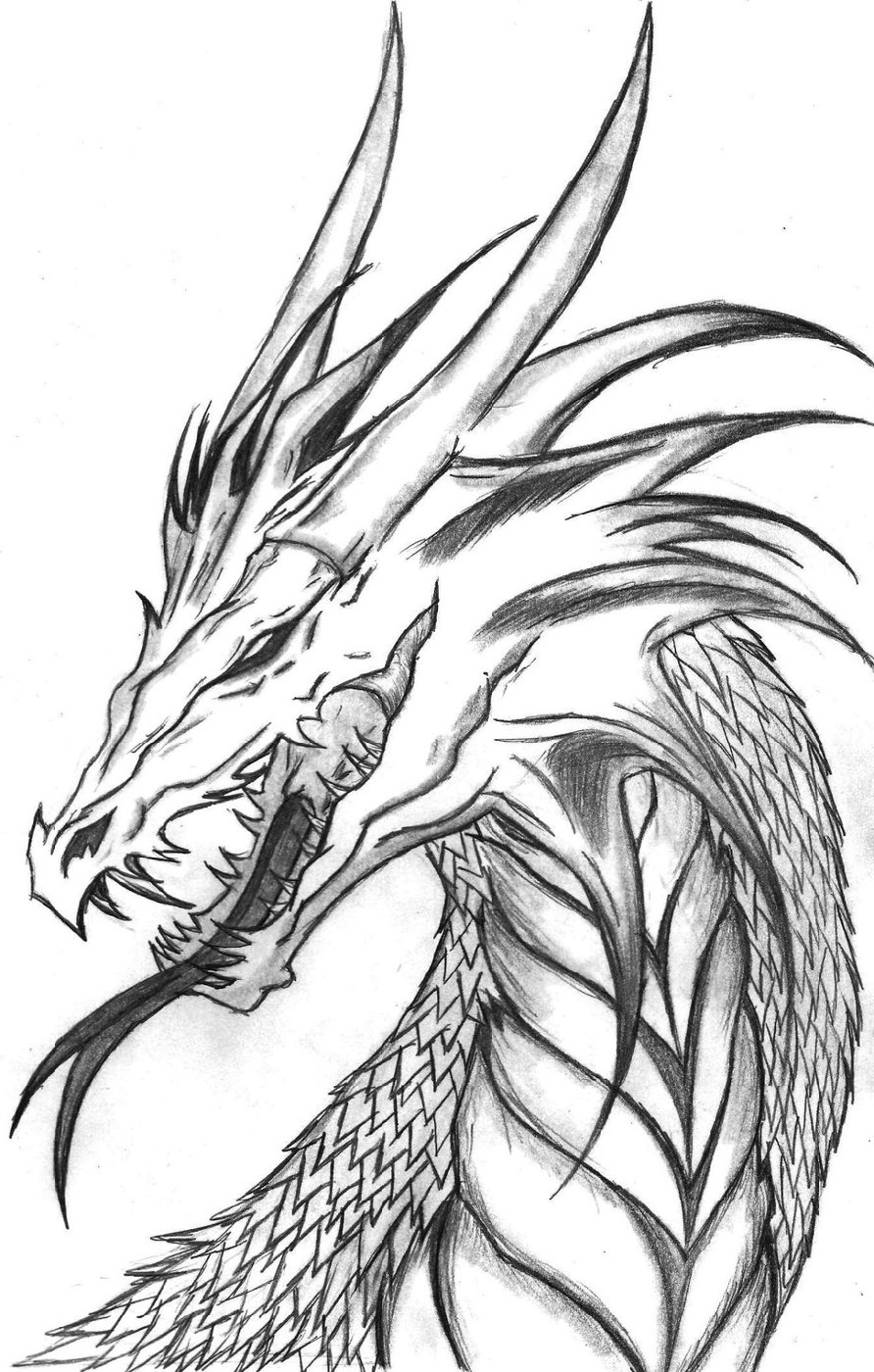 Realistic Dragon Coloring Pages Head