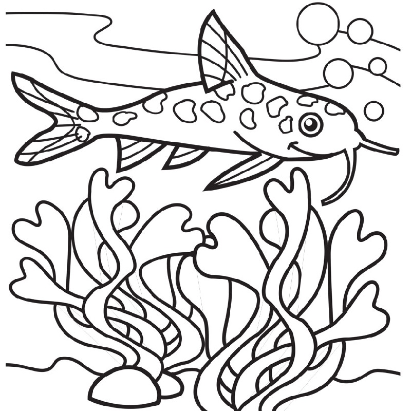 Seaweed Coloring Pages And Fish