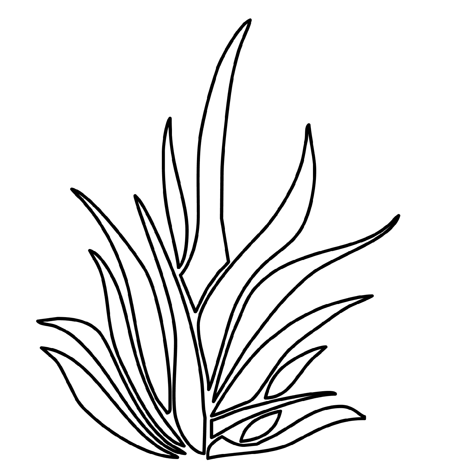 Seaweed Coloring Pages Simple