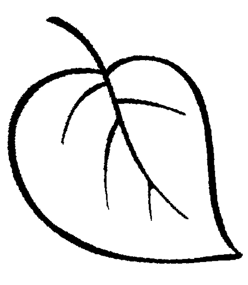Simple Coloring Pages Leaf