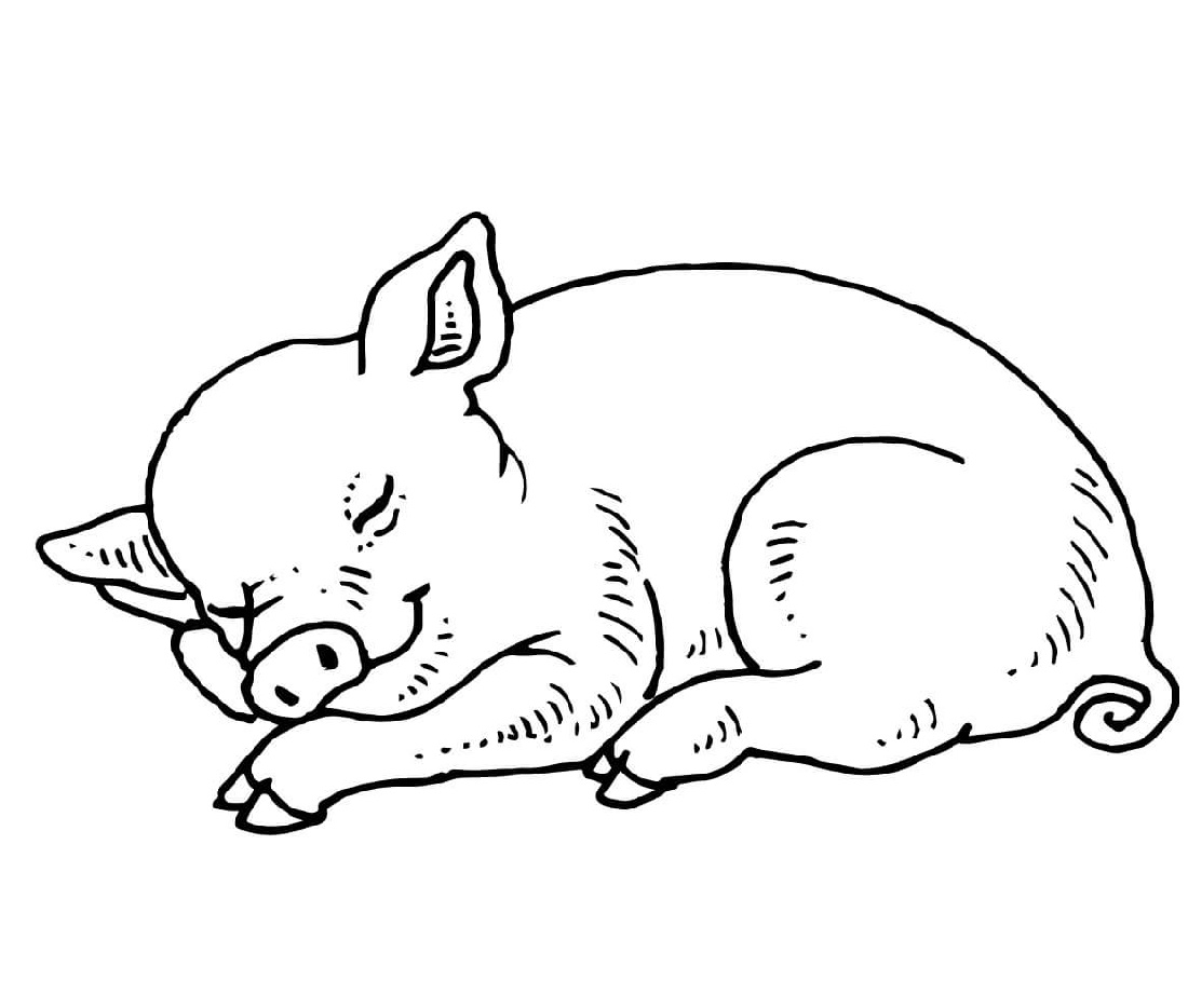 Sleeping Pig Coloring Pages