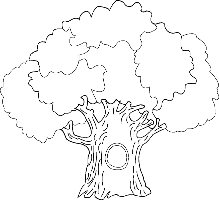 Tree Coloring Pages Free