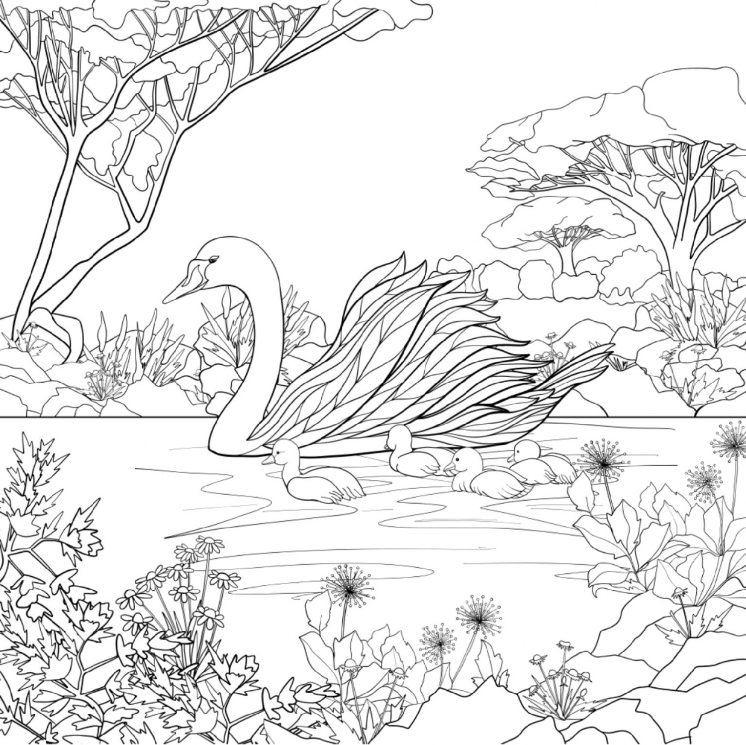 Adult Coloring Book Pages Realistic